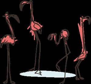 Flamingofamilie